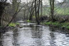 Krummes Wasser oberhalb von Kuventhal (Bildrechte: R. Eikenberg | Fischereiverein Einbeck e.V.)