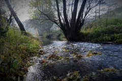 Herbst am Krummen Wasser bei Kuventhal (Bildrechte: R. Eikenberg | Fischereiverein Einbeck e.V.)