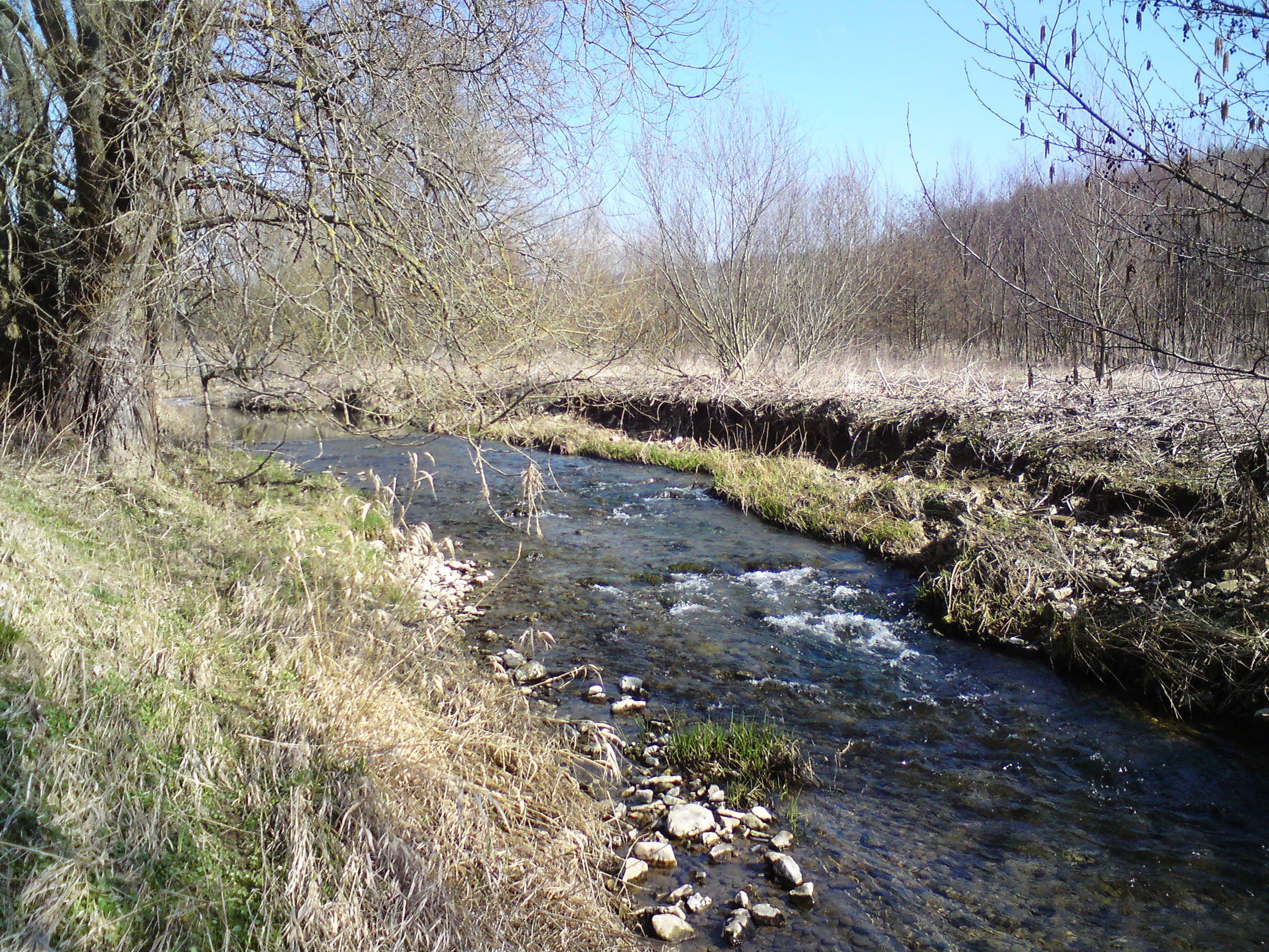 Krummes Wasser unterhalb Kuventhal