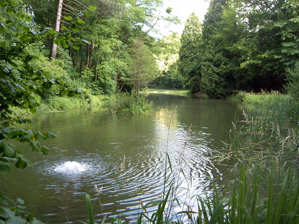Teich am Krähengraben
